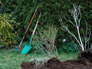 Meble i narzędzia do ogrodu