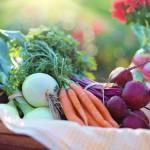 Substancje korzystnie wpływające na nasze zdrowie
